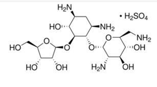 硫酸核糖霉素  Ribostamycin sulfate salt  53797-35-6
